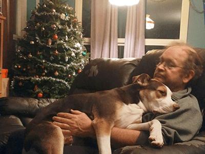 犬は飼わない