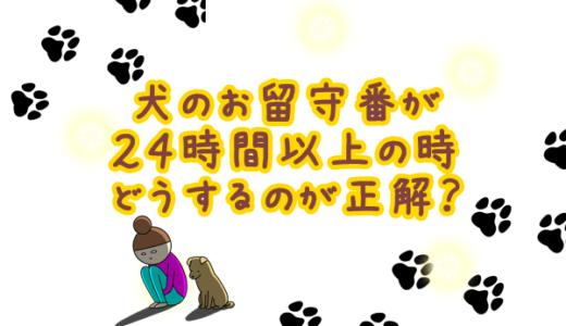 犬の留守番が24時間以上のときは?犬はどれくらい留守番ができるの?