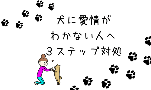 """犬に愛情がわかない人にやってほしい""""簡単3ステップ""""の対処法"""