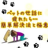 ペットの世話に疲れた人必見!犬との生活が楽しくなる簡単解決法!