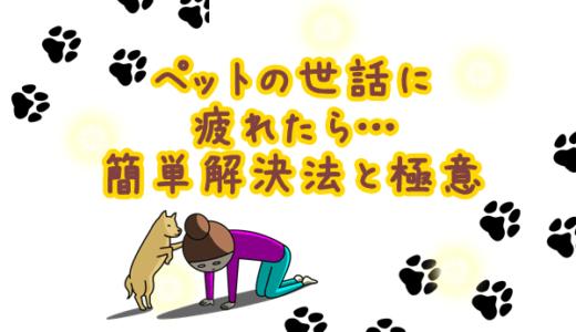 犬との生活に疲れた人必見!犬との生活が楽しくなるマル秘解決法!
