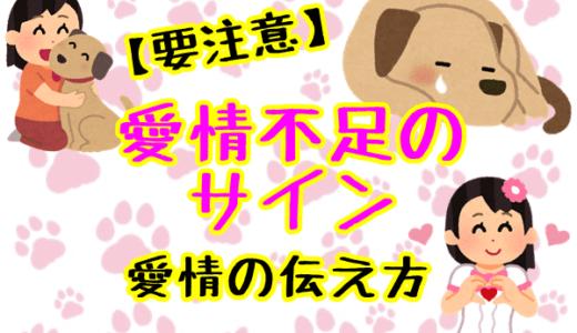 犬が愛情不足の時のサインはこれ!【要注意】犬への愛情の伝え方