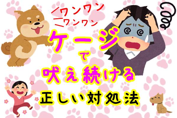 犬 ケージ 吠え続ける
