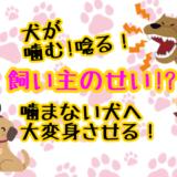 犬 噛む 唸る
