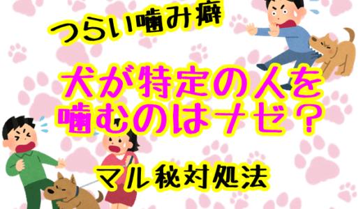 犬が特定の人を噛む理由を徹底解明!噛み犬を直すマル秘対策方法!