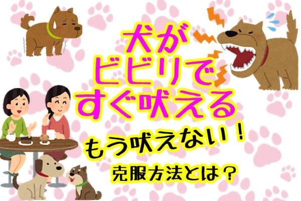 犬 ビビリ 吠える